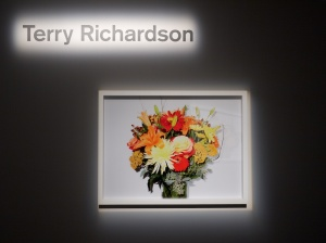 Fine Art Photog x X-Series - Terry Richardson 2